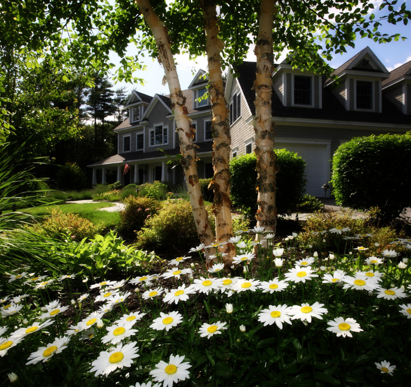 You only have one chance to make a great first impression. Curb appeal is everything!